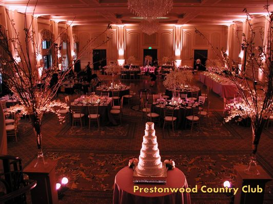 Event party lighting raleigh nc special effects lighting lighting services junglespirit Image collections